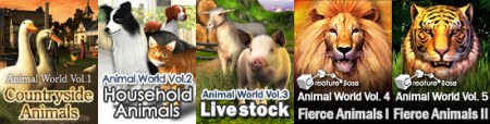 Animal World 5 IN 1 Collection