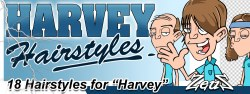 Harvey Bundle